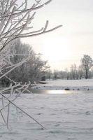 Zegveld-sneeuw-03